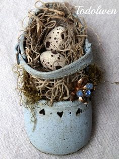 .Eggs and nest in a little shoe