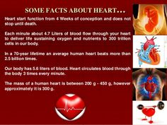 Some #facts about #heart