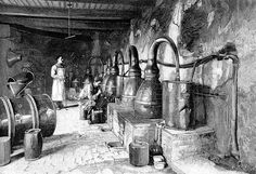 Distilling flowers in a perfume factory, Grasse, France. Date 1898.