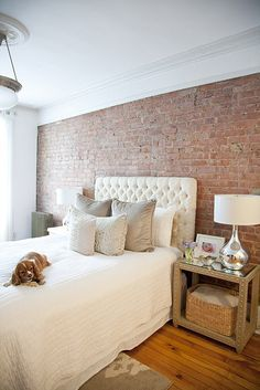 Exposed brick with cornice and plaster