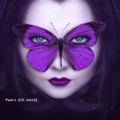 purple-butterfly-and-tiger_orig.gif (300×300)