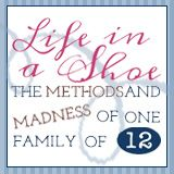 "Life In a Shoe Blog.  One of the ""4 Moms.""  She has 10 children and is expecting (written 4/2012).  Homeschooling, reviews and giveaways of various things, large family life, humor.  I love all the ""4 Moms"" blogs."