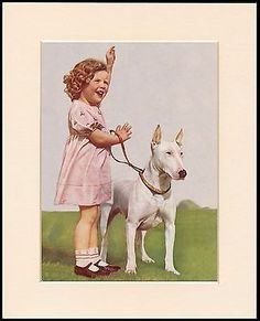 Bull Terrier Little Girl And Her Dog Charming Print Mounted Ready To Frame