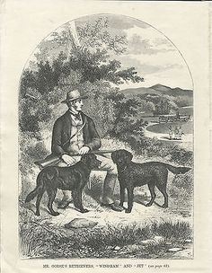 Curly & flat #coated retriever dogs and #owner 1867 antique dog print #engraving,  View more on the LINK: 	http://www.zeppy.io/product/gb/2/301707392292/