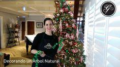 Paso por paso como decorar un árbol navideño sin listones