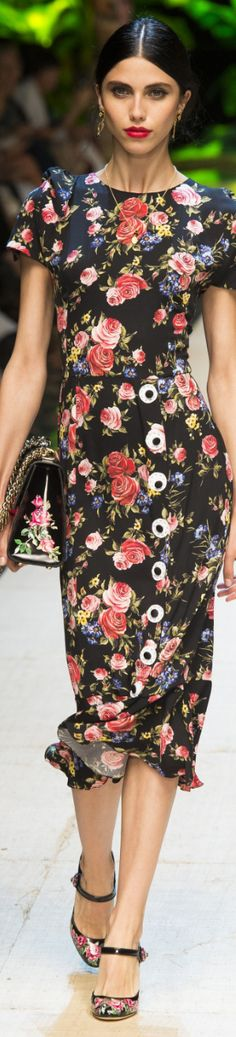 Dolce + Gabbana