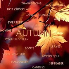 Autumn leaves with a few good reasons to Fall in love with Autumn. Hello Autumn, Autumn Day, I Fall, Autumn Leaves, Early Autumn, Fall Days, Autumn Forest, Autumn Theme, Mabon