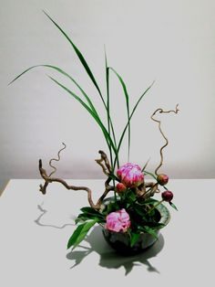 Fotogalerie - ikebana-sogetsu-muenchens Jimdo-Page!