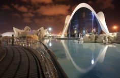 The Oceanográfic of the City of Arts and Sciences is the largest aquarium in Europe.  Come and visit this beautiful city!   You can book your room now at: booking@hivalenci... Tel. +34-962066604 From Monday to Friday (9:30am - 2pm and from 4pm - 8pm) Sundays (10am-4pm)  #VisitValencia #LoveValencia #HiValenciahotel