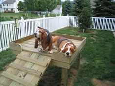 Dog perch for the yard.  Perfect for my short legged lady.