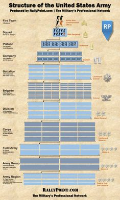 This Infographic Is A Perfect Cheat Sheet For Unit Breakdown In The US Army The U. Army can seem like an overwhelming organization. Check out this infographic for a great cheat sheet, break down of the Army's structure. Military Tactics, Military Humor, Military Weapons, Military Army, Military Life, Military History, Military Aircraft, Military Recruiting, Military Awards