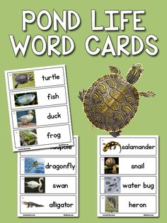 Printable picture-word cards for your Writing Center in preschool, pre-k, kindergarten, and beyond. This free download includes 14 Pond Life cards.