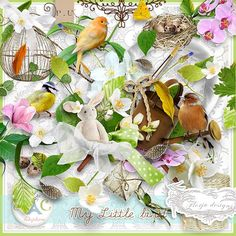 kit My little bird    http://digital-crea.fr/shop/index.php?main_page=product_info=155_167_id=12106