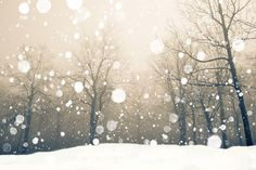 Falling Snow: Crystals of ice - Dotting the sky they fall - Blanketing in white