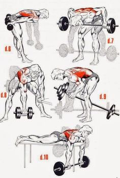 22 best lat workout images  exercise workouts physical