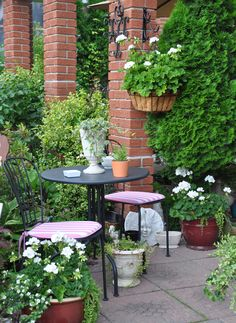 I am always delighted to hear from readers. On occasion, I even get an invitation to visit their gardens! Teresa is regular reade. Small Outdoor Spaces, Outdoor Rooms, Outdoor Living, Outdoor Decor, Gardening Zones, Container Gardening, Gardening Blogs, Backyard Trees, Yard Design