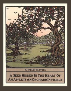 A seed hidden in the heart of an apple is an orchard invisible --Welsh proverb