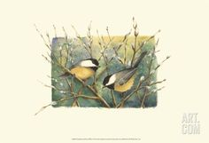 Chickadees and Pussy Willow Art Print by Janet Mandel at Art.com
