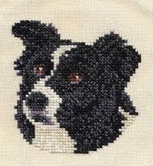 Myndaniðurstaða fyrir border collie knitting chart