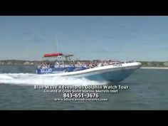 Tour emphasizes the ecology, wildlife and beauty of the coast. The trip is packed with information about dolphins in the wild and their natural behaviors. Myrtle Beach Attractions, Crazy Sister, Murrells Inlet, Myrtle Beach Sc, Boat Rental, Jet Ski, Fishing Boats, Dolphins, Fun Things