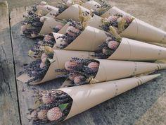 薰衣草一直是很多人喜歡的香草植物 $200