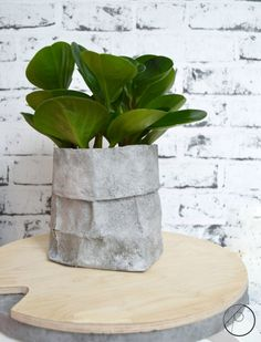 Diy Planters Outdoor, Diy Concrete Planters, Concrete Cement, Concrete Crafts, Paper Pot, Diy Origami, Plant Holders, Furniture Makeover, Container Gardening