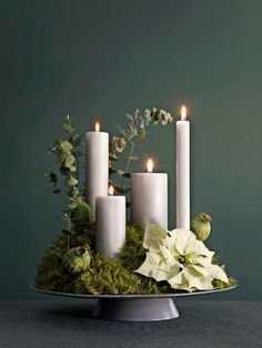25 Advent wreaths you can make yourself - Alexandra Fischer - Picb 25 adventskranse du selv kan lave – Alexandra Fischer – Picbilder- Wir Für Bilder 25 Advent wreaths you can make yourself – Alexandra Fischer – to - Christmas Advent Wreath, Noel Christmas, Christmas Crafts, Xmas, Advent Wreaths, Christmas Ideas, Christmas Tables, Nordic Christmas, Modern Christmas