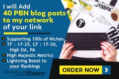 do 40 PBN blog post for you on my private blog network by shanae_pbn