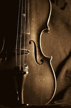 Violin Art, Violin Music, Cello, Sound Of Music, Music Love, Violin Photography, Double Bass, Music Artwork, Music Images