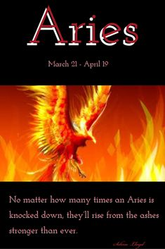 Aries - No matter how many times an Aries is knocked down, they'll rise from the ashes stronger than ever. Aries Taurus Cusp, Aries Zodiac Facts, Aries Ram, Aries Love, Aries Astrology, Aries Quotes, Aries Sign, Aries Horoscope, My Zodiac Sign