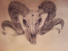 Ram skull. Tattoo idea.