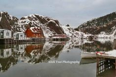 Quidi Vidi, St. John's: See 250 reviews, articles, and 87 photos of Quidi Vidi, ranked No.11 on TripAdvisor among 88 attractions in St. John's. Newfoundland And Labrador, St John's, Trip Advisor, Attraction, Articles, Canada, Musicians, Chili, Fun