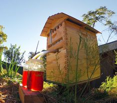 Get the Flow Hive for Honey on Tap! | 16 Bee Hive Plans - Build a safe place to save the bees! at http://pioneersettler.com/best-bee-hive-plans