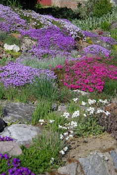 Krása je všude pro toho, kdo ji chápe a chce Unique Gardens, Back Gardens, Beautiful Gardens, Outdoor Gardens, Small Garden Arbour, Garden Arbor, Garden Paths, Garden Design, Landscape Design