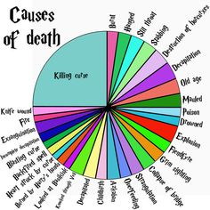 14 Charts That Only Harry Potter Geeks Will Understand (Who died in childbirth or drowned?)