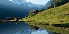 Evolène Région Destinations, Parcs, The Good Place, River, Mountains, Dogs, Animals, Outdoor, Image