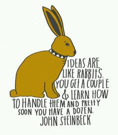 ideas are like rabbits