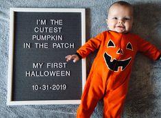 Pumpkin baby letter board