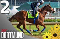 Dortmund post position #2 Preakness 5/16/15 Race Horses, Horse Racing, Preakness Stakes, American Pharoah, Sport Of Kings, Kentucky Derby, World, Animals, Dortmund