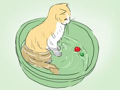 Si bien tu gato está equipado para limpiarse por sí solo, hay ciertas ocasiones en que realmente necesita un baño, ya sea si se ensucia con algo muy pegajoso o sucio o si su pelaje se siente tan grasoso que precise de cuidados. Bañar a tu g...