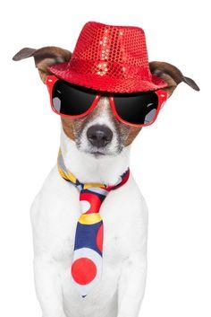 #optometry #sunglasses