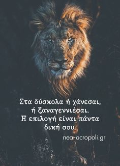 Bible Verses Quotes, Wise Quotes, Movie Quotes, Motivational Quotes, Funny Quotes, Inspirational Quotes, Greek Quotes, Badass Quotes, Meaningful Quotes
