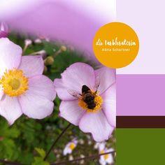 #farbinspiration #sommer #blumen #biene #blüte #gelb #rosa #grün #rotviolett #pink #yellow #green #darkpurple #farbpalette #farbprofil #farbkombination #farbe #colorpalette #colourpalette #inspiration #color #colour #kleurenpalet