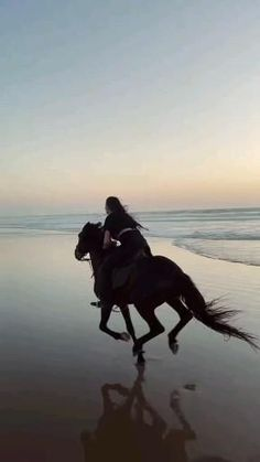 Most Beautiful Horses, Beautiful Images, Grunge Photography, Girl Photography, Girly Pictures, Friend Pictures, Joker Hd Wallpaper, I Love Rain, Photo Frame Design