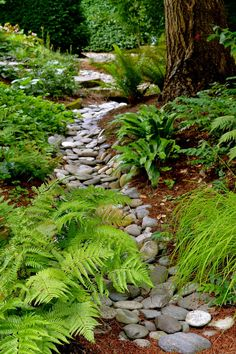 Backyard landscaping with rocks dry creek Ideas River Rock Landscaping, Landscaping With Rocks, Backyard Landscaping, Landscaping Ideas, Dry Riverbed Landscaping, Backyard Ideas, Natural Landscaping, Country Landscaping, Patio Ideas