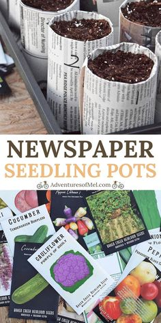How to make your own newspaper seedling pots for starting seeds indoors, along with tips and ideas for soil, supplies, and growing plants from seed. #adventuresofmel #seedstarting #gardening