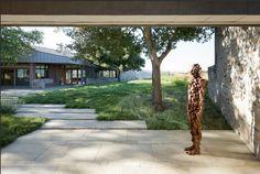 contemporary garden by Andrea Cochrane