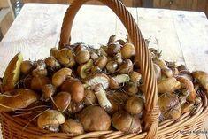 Skórka pomarańczowa do ciast i deserów | Smaczna Pyza Onion, Stuffed Mushrooms, Spices, Vegetables, Food, Stuff Mushrooms, Spice, Onions, Essen