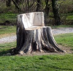 Remove-Tree-Stump-Stone-Gravel.jpg (640×622)