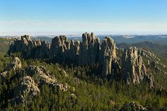 Black Hills, Custer State Park, South Dakota~Awesome ride on our Harley! Custer State Park, Great Places, Beautiful Places, Places To Visit, State Parks, South Dakota Vacation, Us National Parks, Scenery, Adventure
